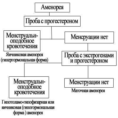 amenorea_3