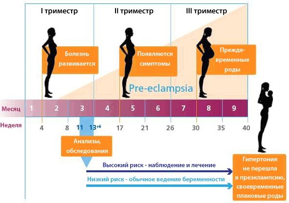 preeklampsiya_5