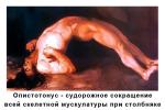 stolbniyk_4